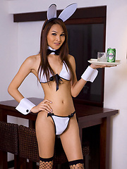 Ladyboy Paris plays with her asshole in a bunny outfit