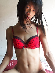 Enjoy your erotic vacations with this romantic Thai ladyboy