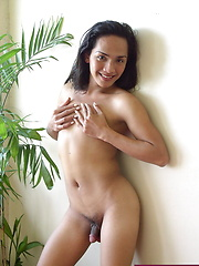 Tantalizing Asian shemale offering her assets to get laid