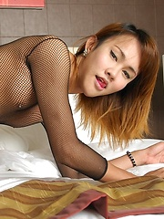 Sexy shemale in fishnets